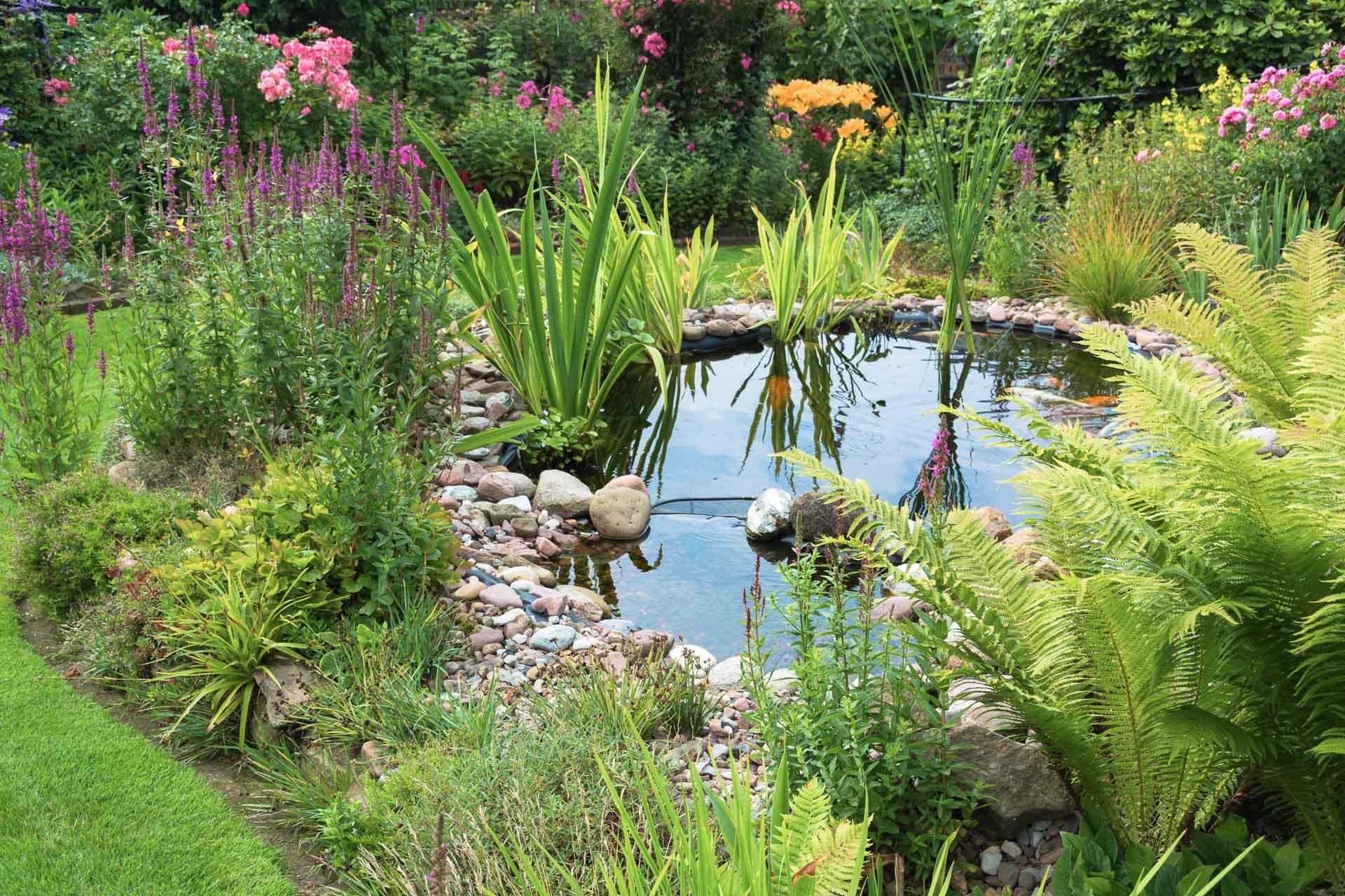 Gärten von Kilian, Gartengestaltung & Gartenpflege, Landschaftsgärtner, Teich